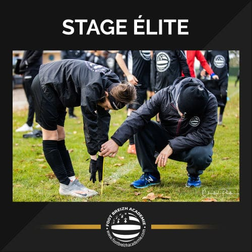 stage elite